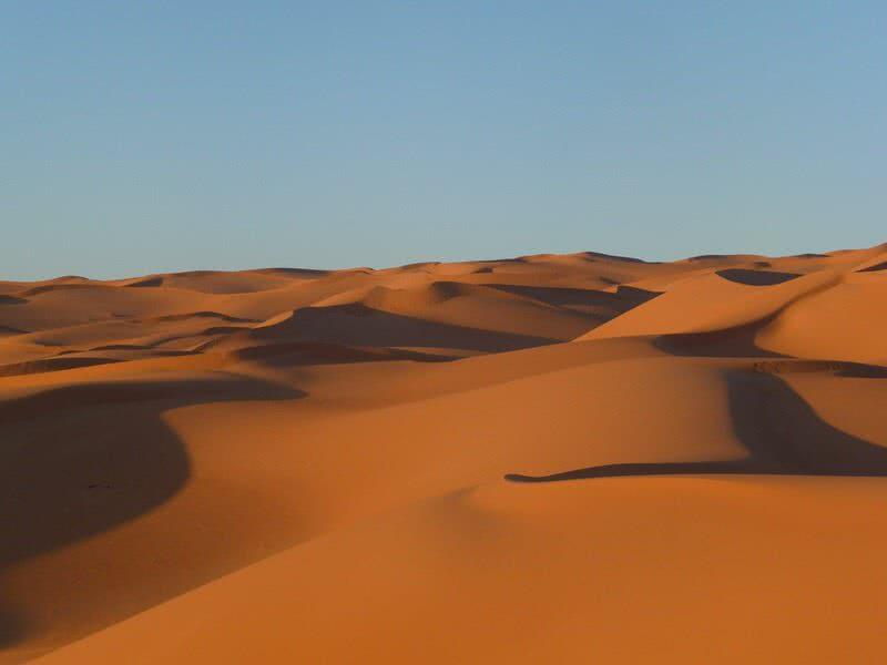 بیابان صحرا